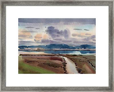 Salt Marsh On San Francisco Bay Framed Print by Donald Maier