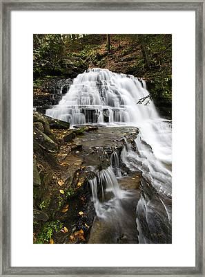 Salt Springs Waterfall Framed Print by Christina Rollo
