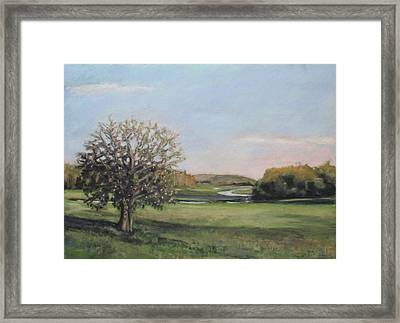 Salt Water Farm Framed Print by Grace Keown