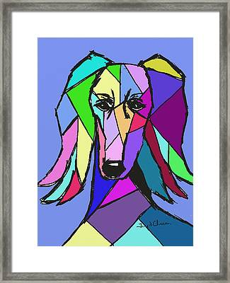 Saluki Colors Framed Print by Terry Chacon