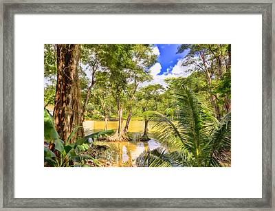 Salybia River Framed Print by Nadia Sanowar