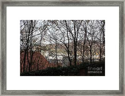 Salzburg Through The Trees Framed Print by Joan Sharron