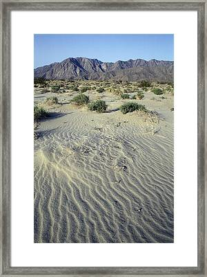 Sand Dunes And San Ysidro Mountains Framed Print by Rich Reid