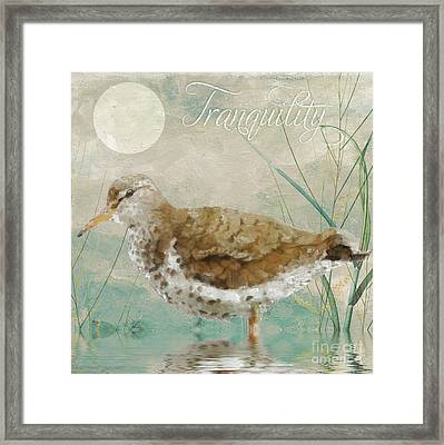 Sandpiper II Framed Print by Mindy Sommers