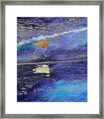 Sandpiper Framed Print by Wally Boggus