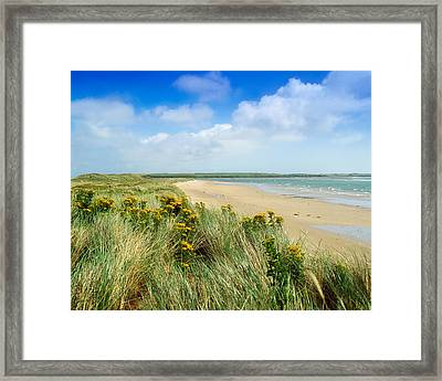 Sandunes At Fethard, Co Wexford, Ireland Framed Print by The Irish Image Collection