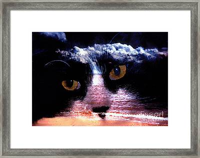 Sandy Paws Framed Print by Clayton Bruster