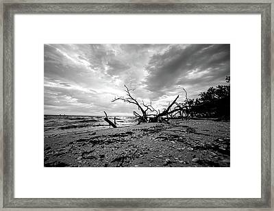 Sanibel Island At Sunrise Framed Print by Scott Pellegrin