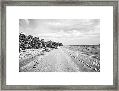 Sanibel Island Florida Framed Print by Scott Pellegrin