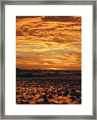 Sanibel Island Framed Print by Nick Flavin