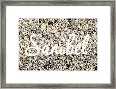 Sanibel Island Seashells Framed Print by Edward Fielding