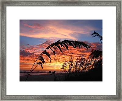 Sanibel Island Sunset Framed Print by Nick Flavin