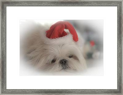 Santa's Sweetie Framed Print by Joy McAdams