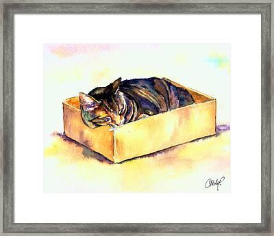 Sassy Sleeping Framed Print by Christy  Freeman