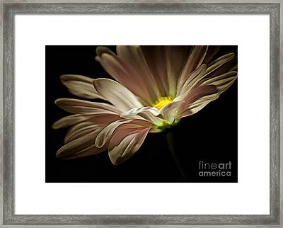 Saving Grace Framed Print by Krissy Katsimbras