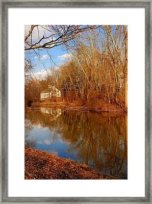 Scene In The Forest - Allaire State Park Framed Print by Angie Tirado