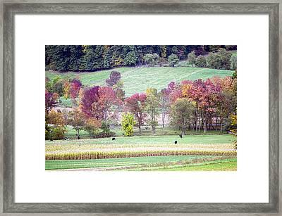 Scenic Amish Landscape 2 Framed Print by Shara Lee
