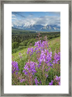 Scenic View Of Landscape Near Palmer Framed Print by Remsberg Inc