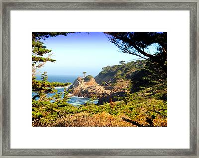 Scenic Point Lobos Framed Print by Joyce Dickens