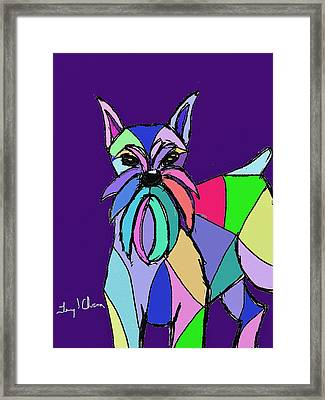 Schnauzer Colors Framed Print by Terry Chacon
