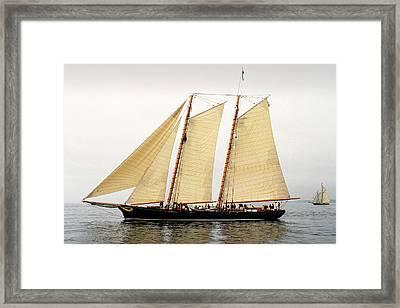 Schooner America Framed Print by Fred LeBlanc