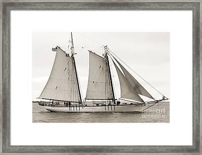 Schooner Harvey Gamage Of Islesboro Maine Framed Print by Dustin K Ryan