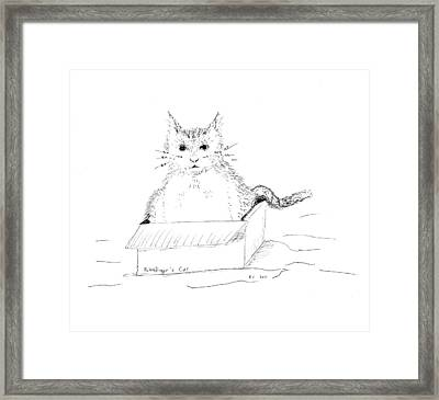 Schrodinger Cat Framed Print by Regina Valluzzi