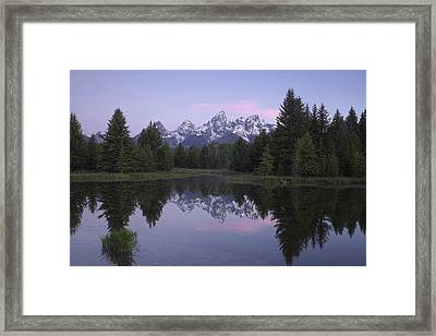 Schwabacher Framed Print by Andrew Soundarajan