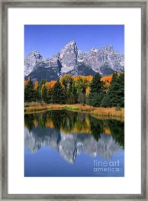 Schwabacher Landing -grand Teton Framed Print by Sandra Bronstein