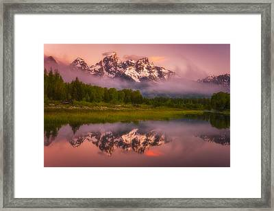 Schwabacher Sweets Framed Print by Darren  White