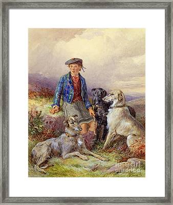 Scottish Boy With Wolfhounds In A Highland Landscape Framed Print by James Jnr Hardy