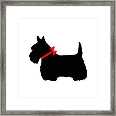 Scotty Dog With Red Bow Framed Print by Marianna Mills