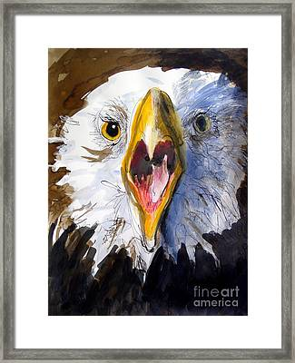 Screaming Eagle 2004 Framed Print by Paul Miller