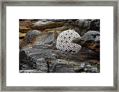 Sculpture By The Sea - Andrea -  By Kaye Menner Framed Print by Kaye Menner