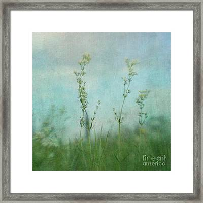 Summer Meadow Poem 3 Framed Print by Priska Wettstein