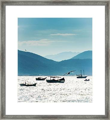 Sea And Freedom Framed Print by Martin Lopreiato