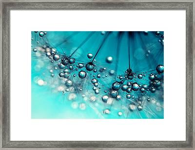 Sea Blue Shower Framed Print by Sharon Johnstone