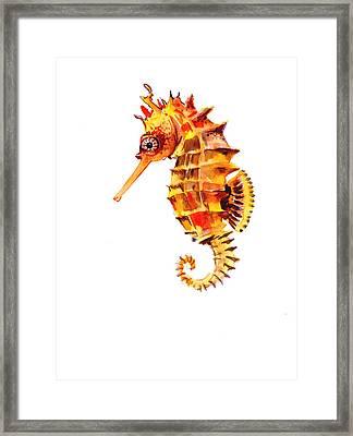 Sea Horse Framed Print by Suren Nersisyan