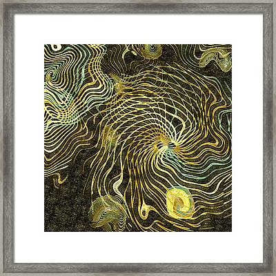 Sea Life Framed Print by Susan Maxwell Schmidt