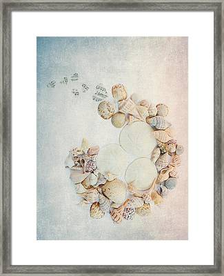 Sea Shells 7 Framed Print by Rebecca Cozart