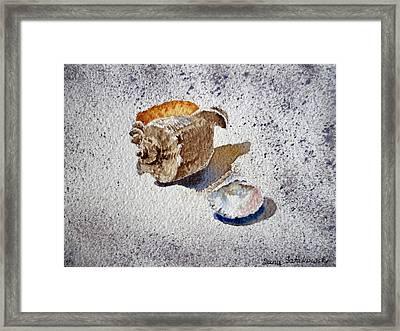 Sea Shells Framed Print by Irina Sztukowski