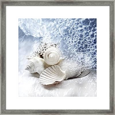 Sea Snails Framed Print by Maika 777