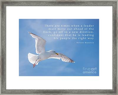 Seagull Flying High Framed Print by Amanda Elwell