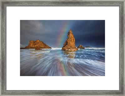 Seagull Storm Watch Framed Print by Darren  White