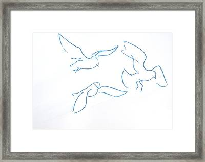 Seagulls Line Illustration Framed Print by Mike Jory