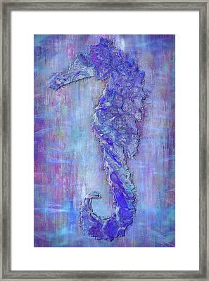 Seahoarse 6 Framed Print by Jack Zulli