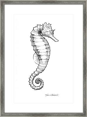Seahorse Black And White Sketch Framed Print by Karen Whitworth