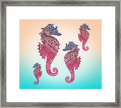 Seahorse Framed Print by Mark Ashkenazi