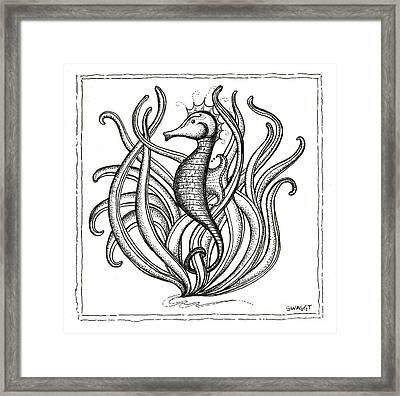 Seahorse Framed Print by Stephanie Troxell