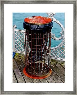 Sealife Framed Print by Roberto Alamino